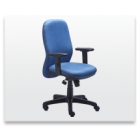 Executive Chair, Revolving Chair